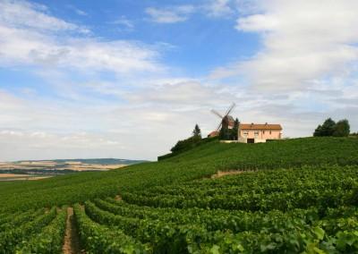 Route du champagne 2016 Aube