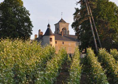 Chateau wijngaard